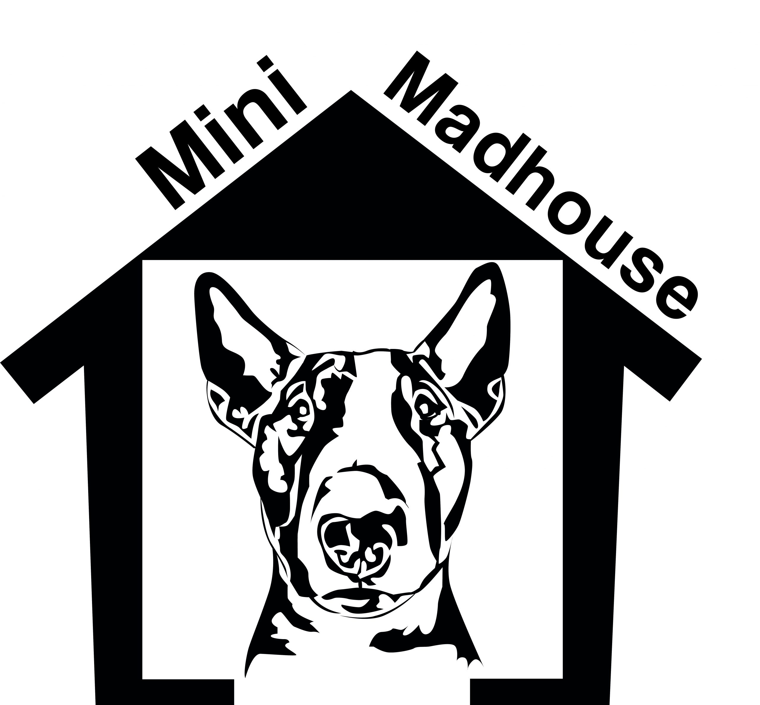 Mini Madhouse